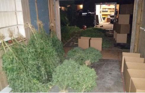 Marijuana grow house/HCSO